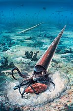 Nautiloid Orthocone attack, illustration