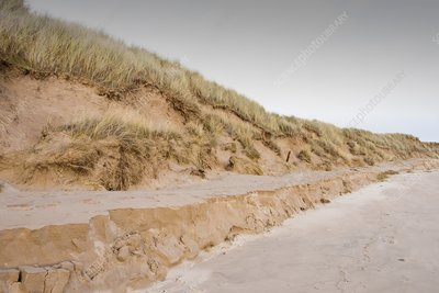 Sand dunes at Beadnell, UK