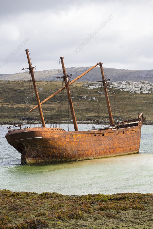 The shipwreck of the Lady Elizabeth