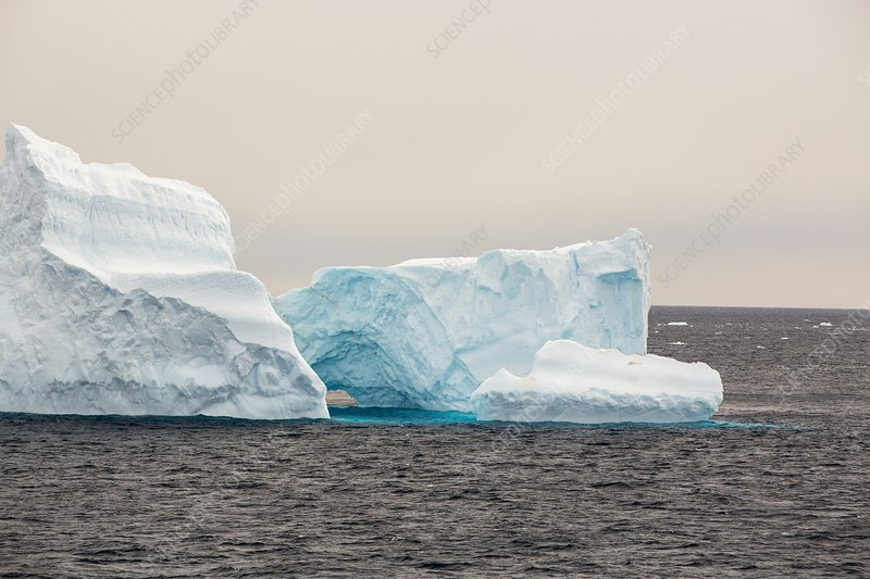 Icebergs off the Antarctic Peninsular