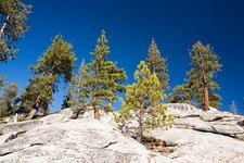 Granite outcrop, Sequoia National Park