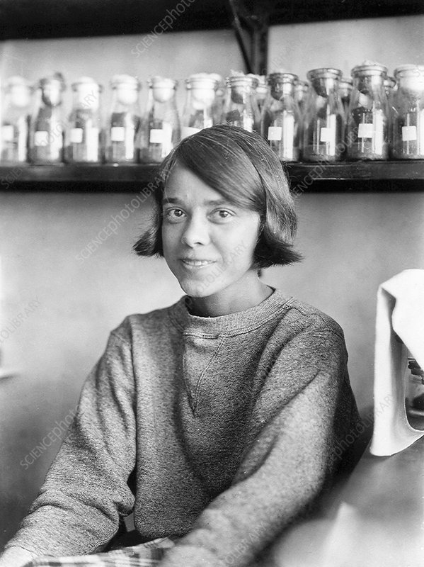 Helen Redfield, US geneticist