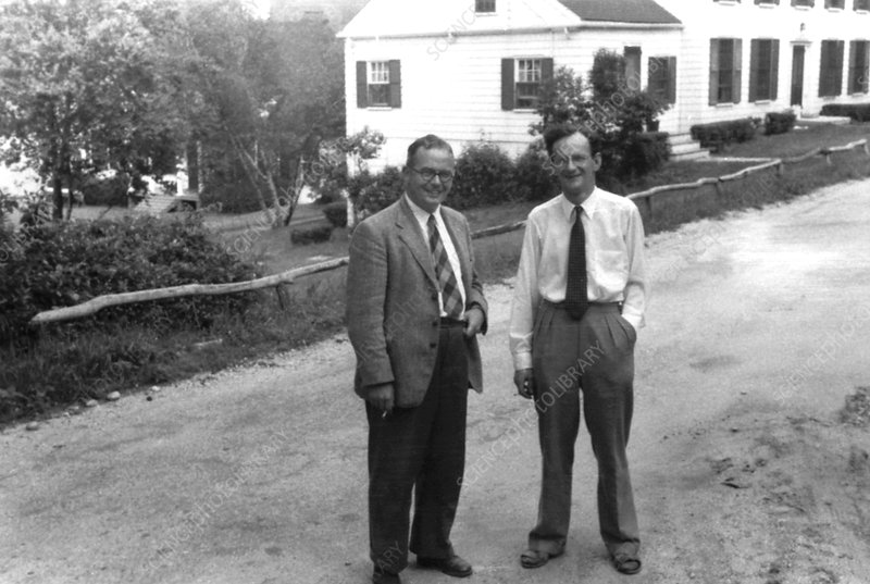 Mather and Thoday, British geneticists
