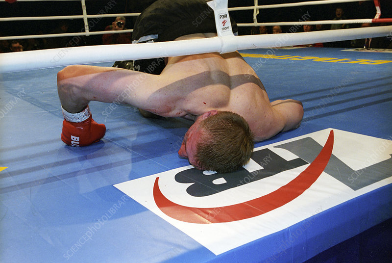 Knockout in the boxing ring