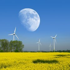 Moon over wind turbines in a field