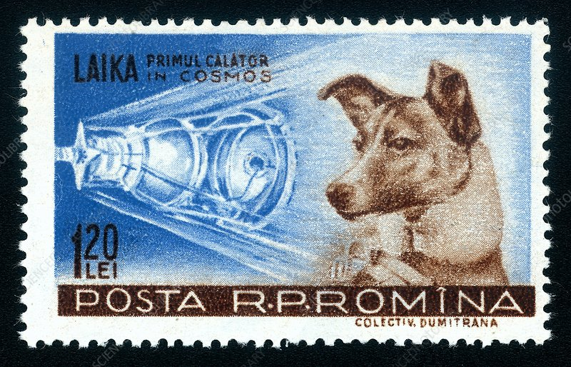 Laika space dog commemorative stamp