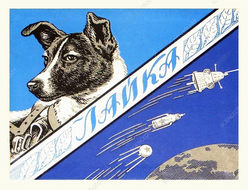 Laika space dog commemorative packaging