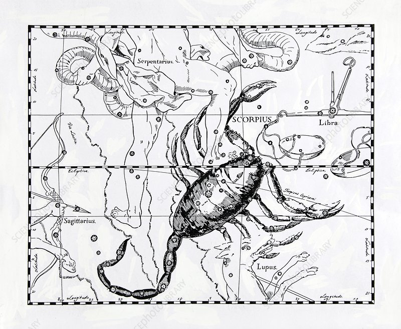 Scorpio, illustration