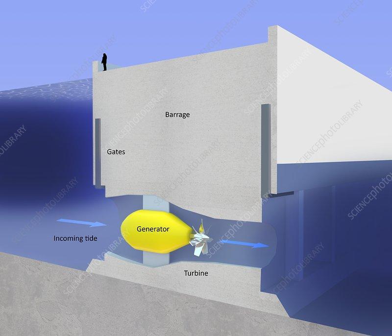 Tidal Barrage Power  Diagram - Stock Image  7684
