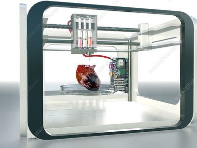 3D printed heart, conceptual image