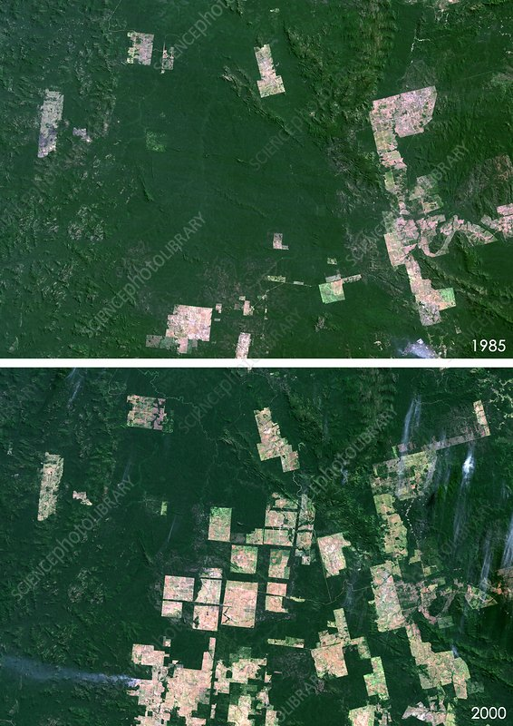 Para, Brazil, deforestation 1992 and 2000