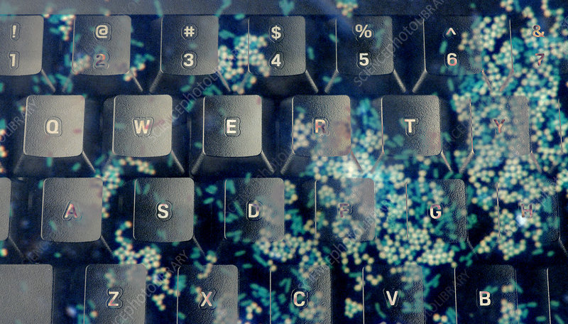 Keyboard and Germs