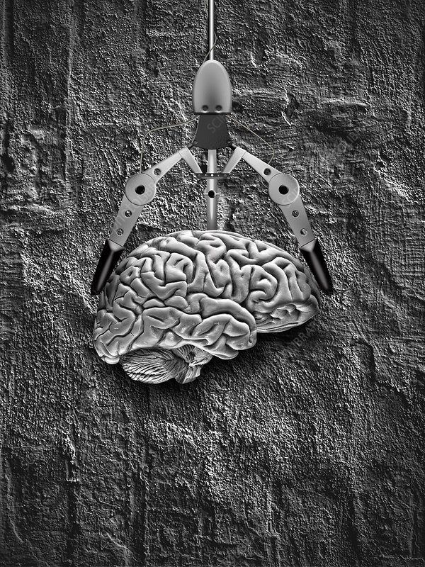 Brain with Claw
