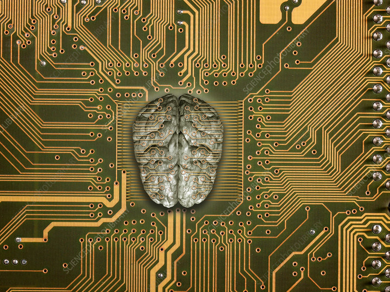 Brain with PCB