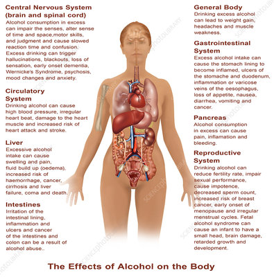 Effects of Alcohol Use