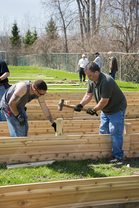Volunteers building raised beds