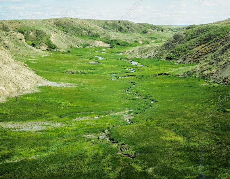 Whitetail Creek, Nebraska