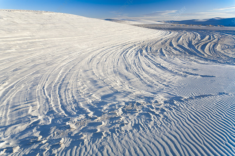 Patterns in Dunes