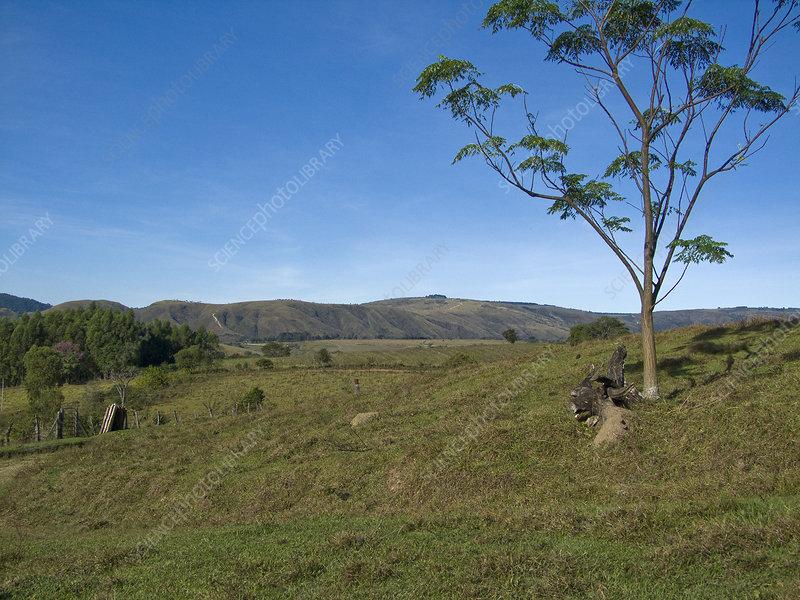 Minas Gerais Landscape