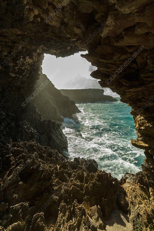Cave Entrance, Barbados
