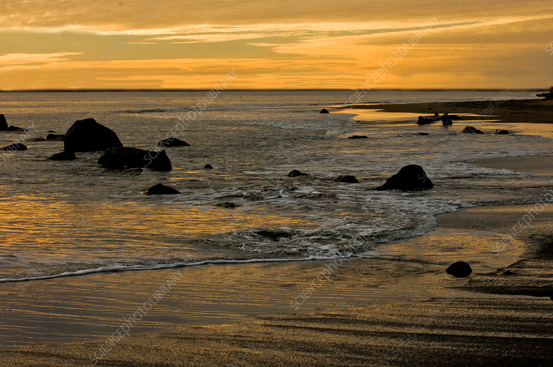 Sunset from Damon Point
