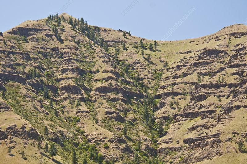 Basalt Flows, Imnaha, Oregon