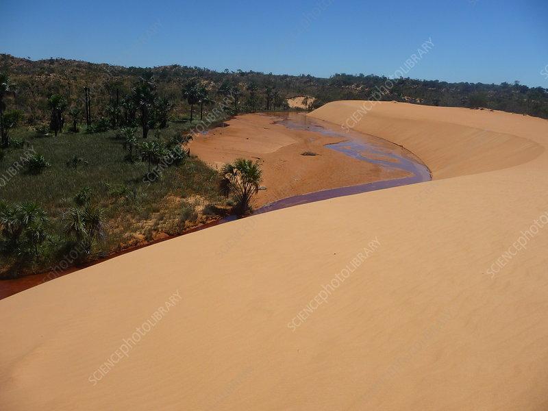 Jalapao landscape, Tocantins, Brazil