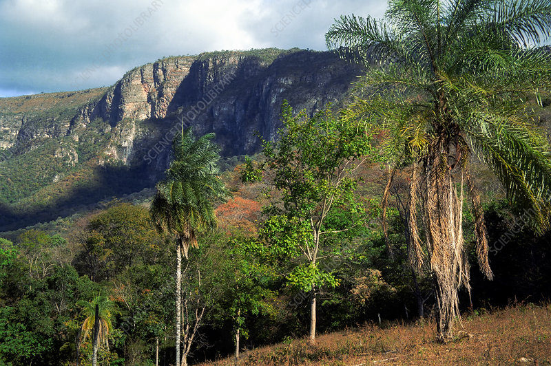 Plateau in Brazilian Highlands