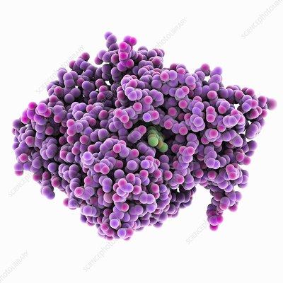 Alzheimer's disease drug molecule