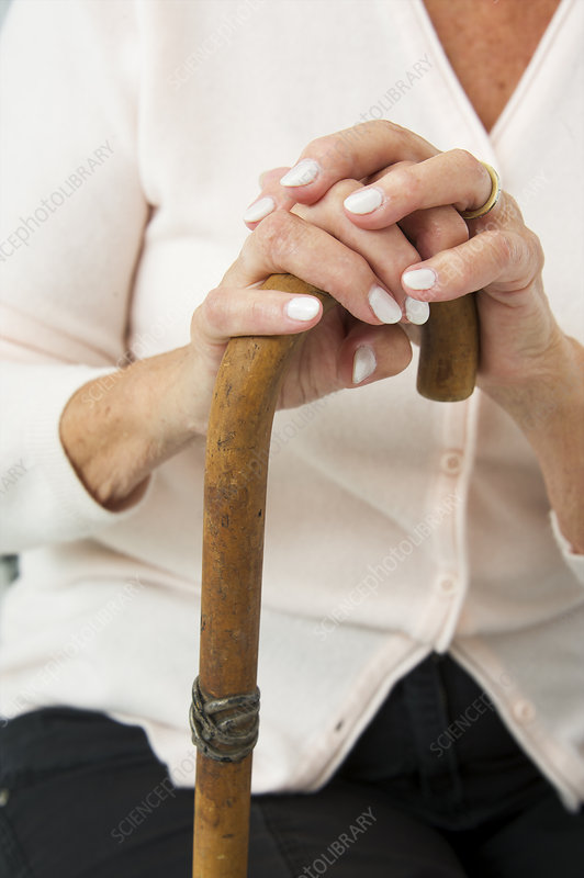 Hands on a walking stick