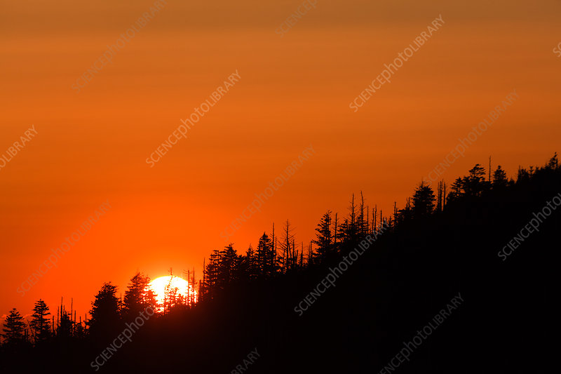 Sunset on Clingman's Dome