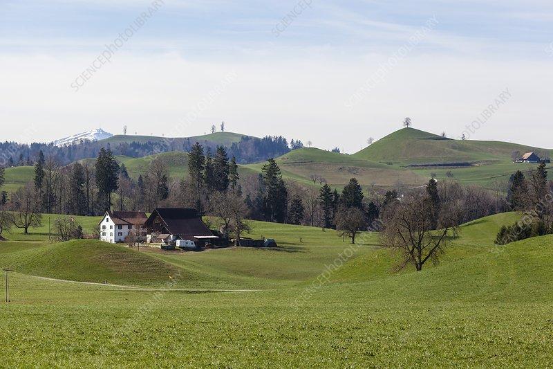 Drumlin field