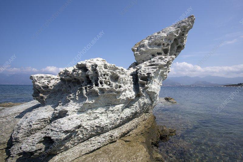 Tafoni weathering in Corsica