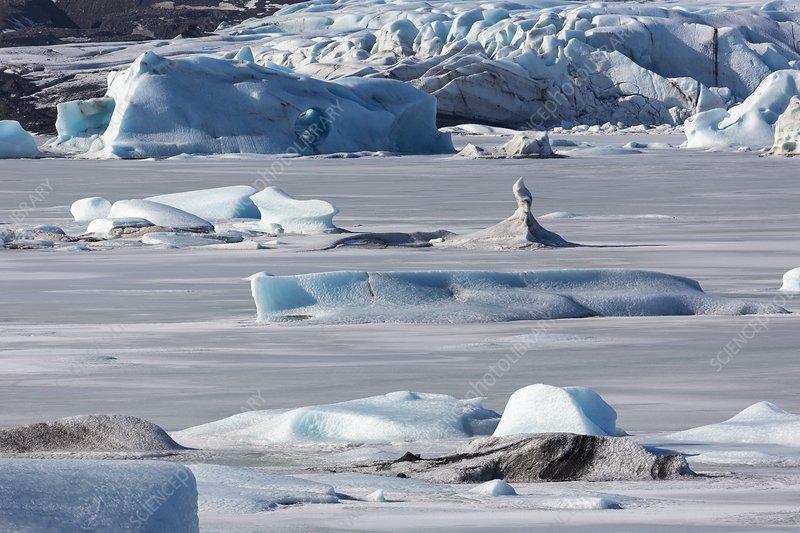 Icebergs in proglacial lake