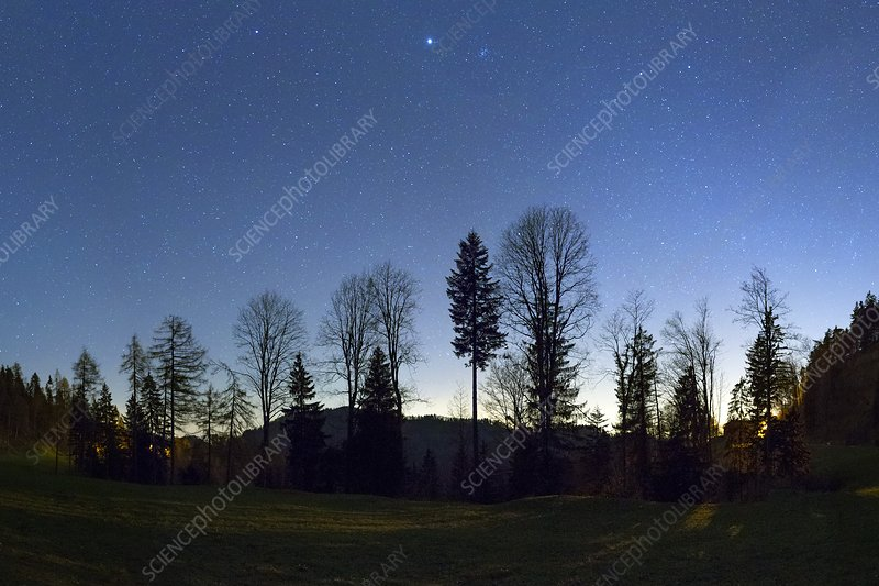 Night panorama with stars