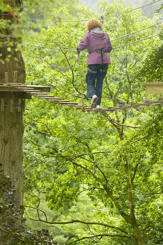 Women on aerial walkway