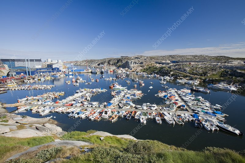 The harbour at Ilulissat on Greenland
