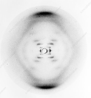 DNA discovery, X-ray diffraction, 1952