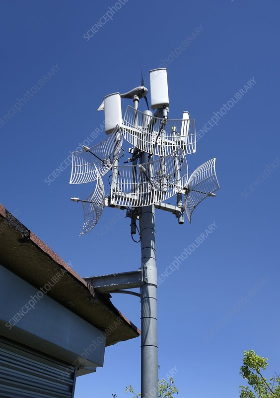 Long-range WiFi antennae