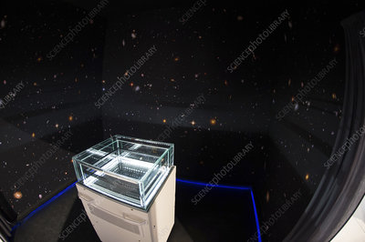 Cloud chamber educational display