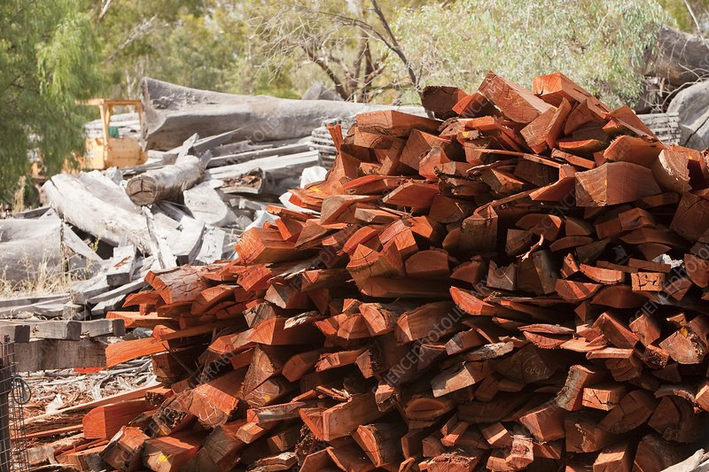 Red Gum timber at a timber yard