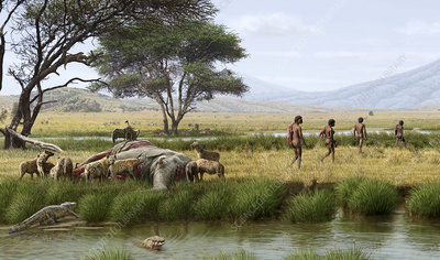 Homo ergaster hunters, illustration