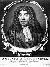 Anton von Leeuwenhoek, Dutch microscopist