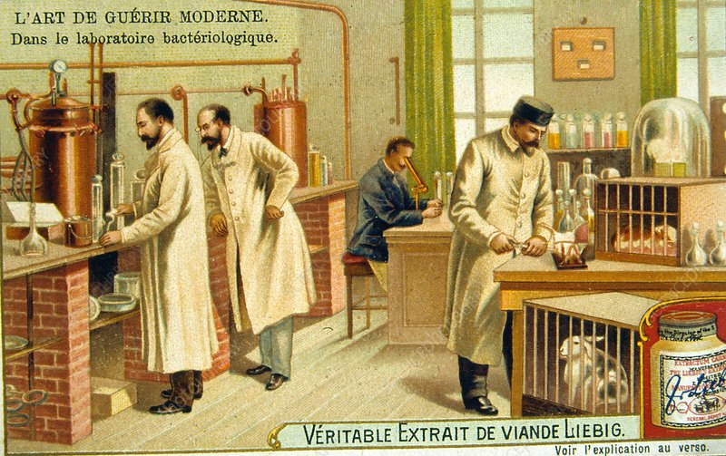 Bacteriological laboratory, France, 1890s
