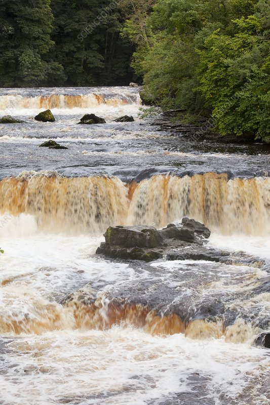 Aysgarth Falls at Aysgarth