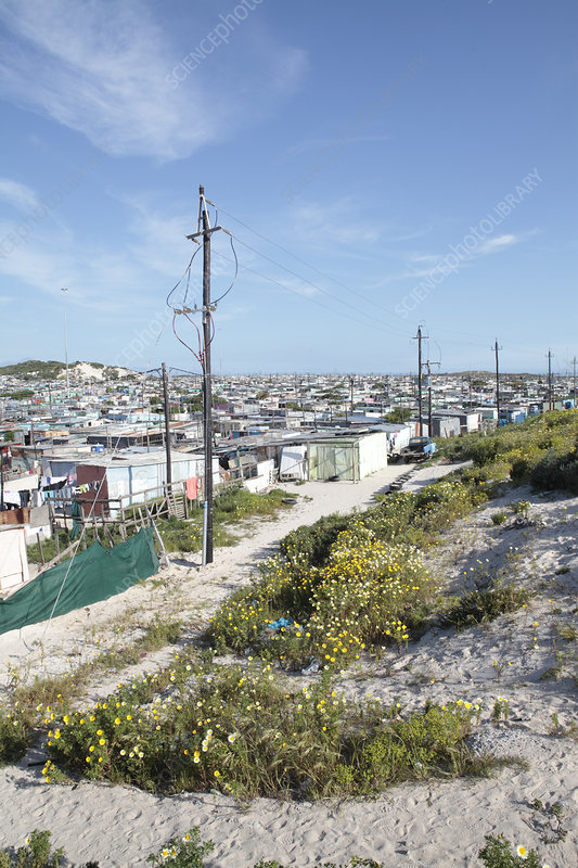 Township, South Africa