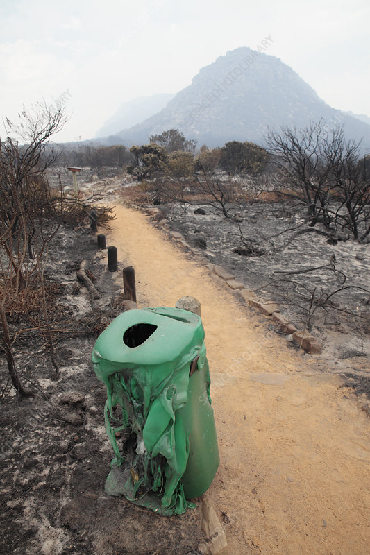 Plastic Garden Edging Cape Town : Fire damaged bin and shrubs stock image c  science photo