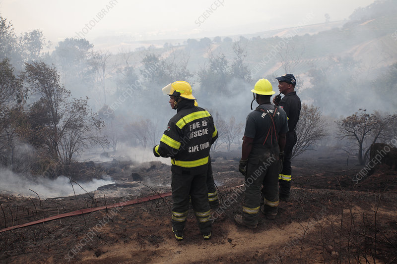 Firefighters in smouldering scrubland