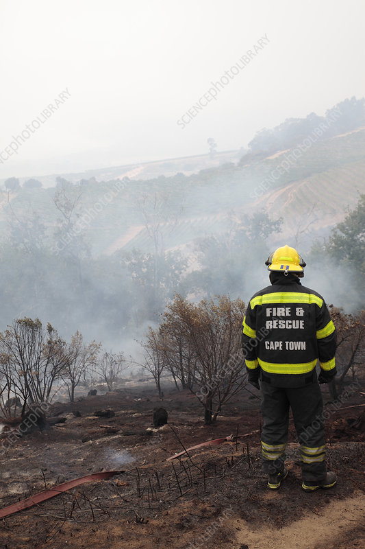 Firefighter in smouldering scrubland
