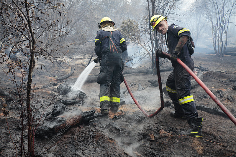 Firefighters tackling wildfire
